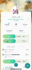 pokemon_rocketdan_11_IMG_5626.jpg